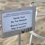 صورة فوتوغرافية لـ EcoTour Adventures Cyprus