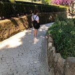 Фотография Дворец Пена