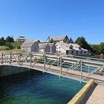 Photo of Basin Head Provincial Park