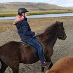 Photo of Riding Tours South Iceland