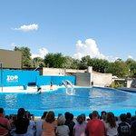 Photo de Zoo Aquarium de Madrid