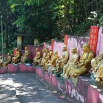 Walking between Buddhas