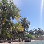Φωτογραφία: Starfish Beach