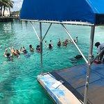 Foto de Blue Lagoon Island