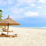 TTC Resort Premium - Doc Let