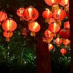 Night lights in the Chinese Garden.