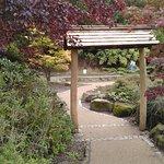 Foto de Valley Gardens