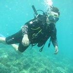 Photo of Nha Trang Sea Star