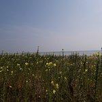 صورة فوتوغرافية لـ Il Faro