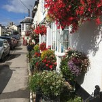 Summer floral display in Charmouth