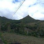 Nature Trails Mauritius Foto