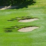 Sierra Star Golf Clubの写真