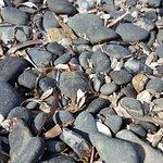 Foto Spiaggia di Norsi