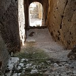 Photo of Gladiator Tours