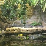 Photo of Leipzig Zoo (Zoologischer Garten Leipzig)
