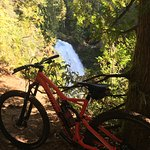 McKenzie River Trail Amazing!!