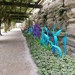 Foto de Biltmore Gardens