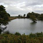Photo of Richmond Park
