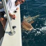 Foto de Key West Fishing Connection