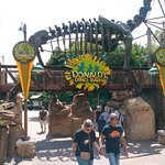 Disney's Animal Kingdom Foto