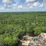 This is the view from the top of the Coba Temple overlooking the jungle.
