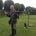 Andy and hus Harris Hawk.
