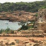 Tipasa Archaeological Park照片