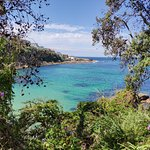 Photo of Bondi to Coogee Beach Coastal Walk