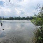 宜蘭羅東林業文化園區照片
