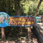 Foto de Ginnie Springs