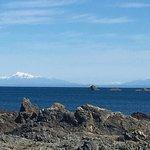 صورة فوتوغرافية لـ Island Bay