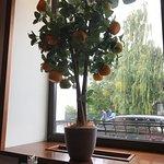 Tri Apelsina Foto
