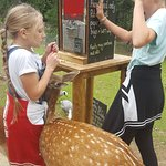 The girls love it... especially feeding the deer. Wonderful place to build confidence, understan