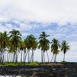 Foto de Pu'uhonua O Honaunau National Historical Park