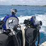 صورة فوتوغرافية لـ Living The Dream Divers