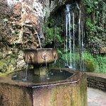 Cascada y fuente