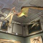 Billede af Museumsquartier