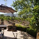 Foto de Hidden Napa Jeep Wine Private Tours