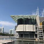 Lisbon Oceanarium Foto
