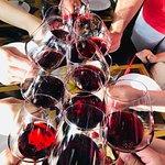 Gattavecchi Winery의 사진
