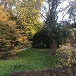Japanese Garden - Szczytnicki Park Foto