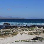 Acampamento e praia