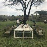 Bilde fra Safaris Unlimited