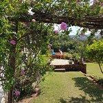 Ntchisi Forest Lodge ภาพถ่าย