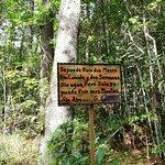 Bild från Celaque National Park