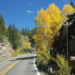 On the pass, the aspens are gorgeous!