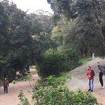 Foto de Parc Perdicaris