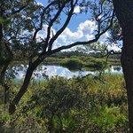 Bild från St. Andrews State Park