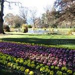 Well tendered colourful flower gardens