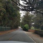 Bild från 17-Mile Drive